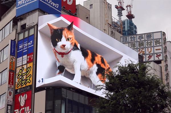 新宿東口3D巨大三毛猫